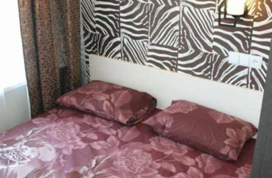 Room in a mini-hotel on Rudneva Square 25, Kharkiv (#3)
